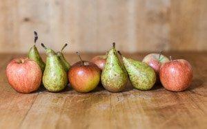 hofladen melder produkte aepfel und birnen