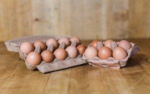 hofladen melder produkte frische eier