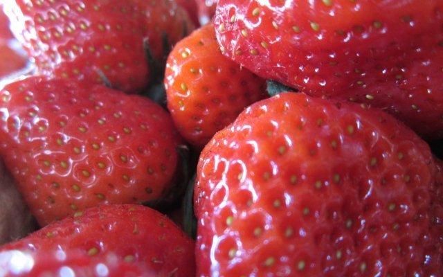 hofladen melder erdbeeren