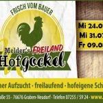 Hofgockel-Schlachttermine