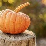 Herbstlicher Oktober
