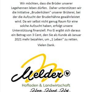 Bruderküken-Initiative