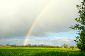 Das Bild zeigt eine Wiese und einen Regenbogen am Himmel.